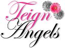 Teign-Angels-Care-Newton-Abbot